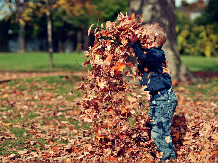 Child playing in the fall leaves