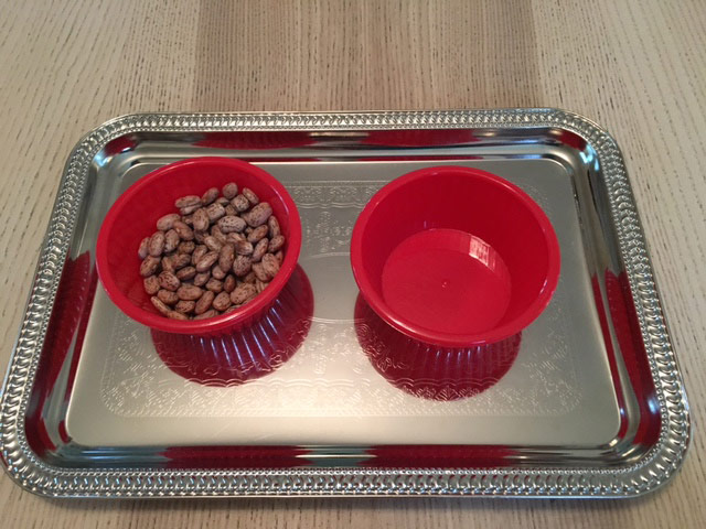 Practical Life - finger transfer - bowl of beans and empty bowl on tray